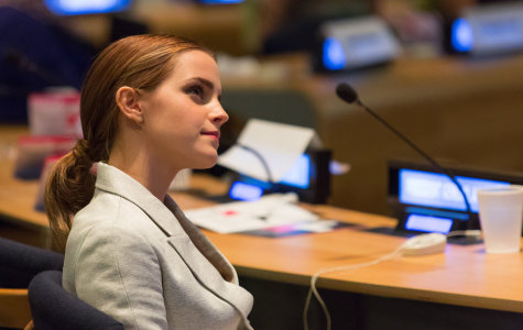 ROLE MODEL: As a successful actress and graduate of Brown University, Watson, 24, has accomplished a lot.