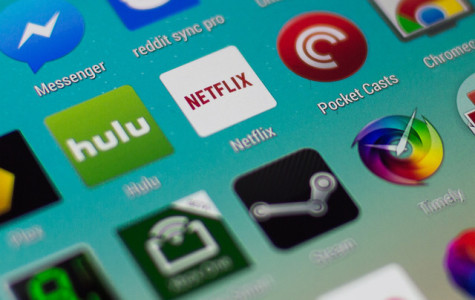 Netflix continues to grow in popularity
